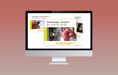 Schwanger.li I Google Display Kampagnen, Monitoring, Reporting